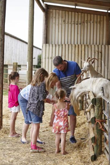 Playing at Farm